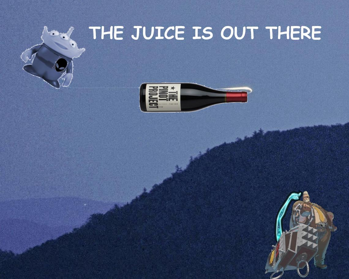 the pinot project.jpg
