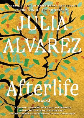 Afterlife Book.jpg