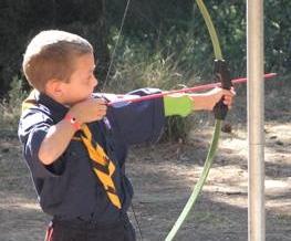 Cub doing archery