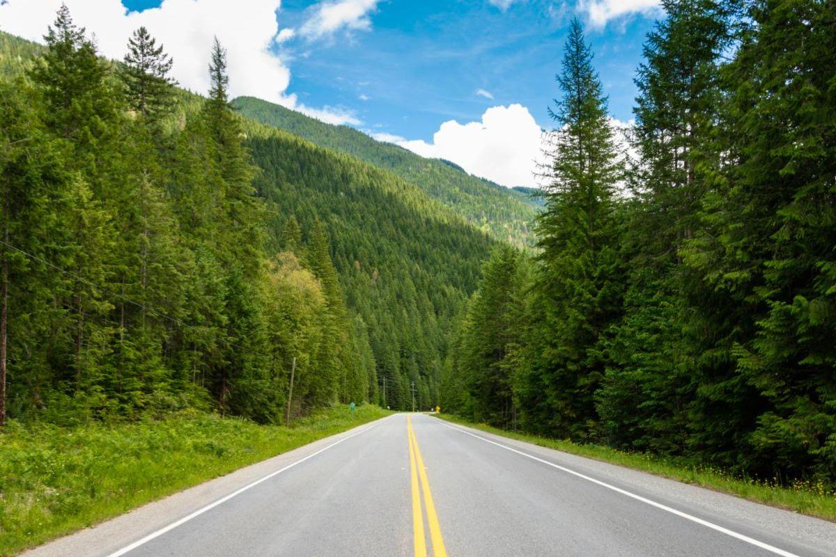 Open road in Mesa Verde