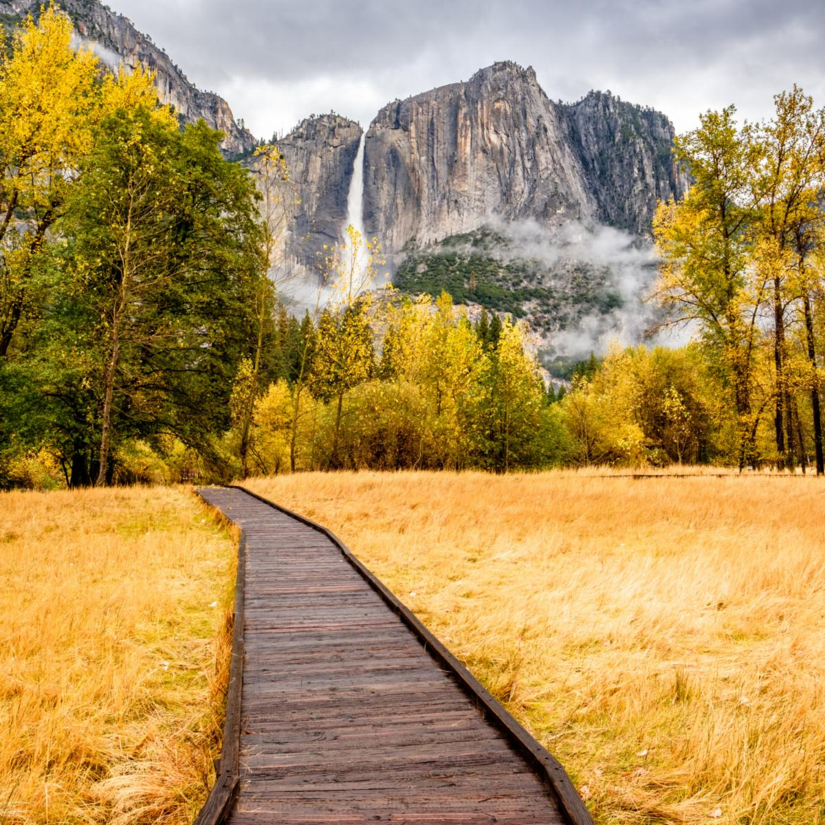 trail at Yosemite National park in the fall