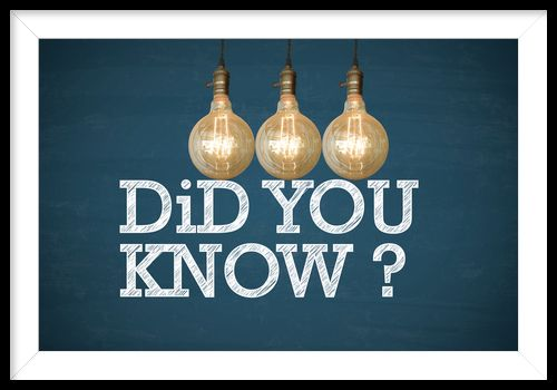 Light bulbs with DID YOU KNOW text on blue chalk board _ business concept _ business idea