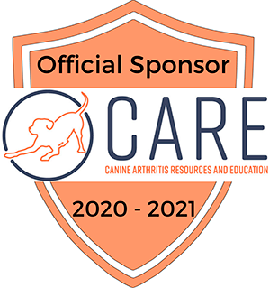 Official Sponsor of CARE