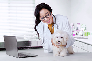 Veterinary student with dog
