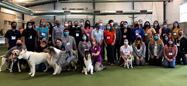 Introduction to Canine Rehabilitation September 2021