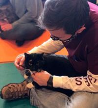 Team Redman cat professor