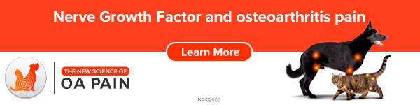 Zoetis banner ad - The new science of OA pain