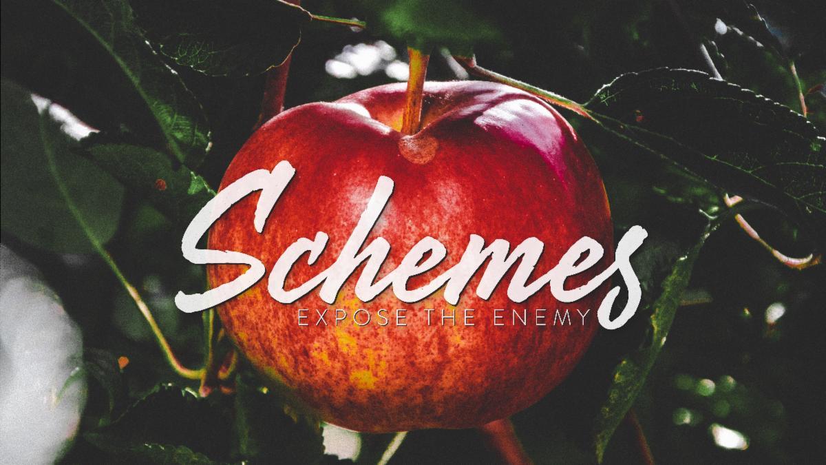 Schemes Smaller.jpg